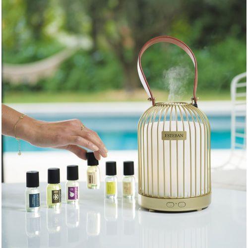 Concentre parfum citronnelle menthe 1