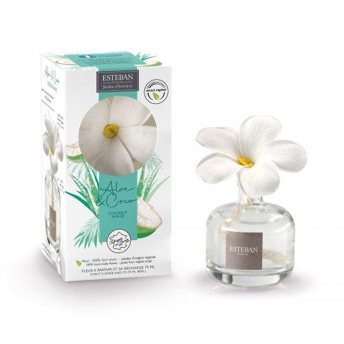 Fleur a parfum 1